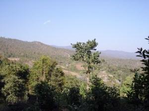 Trek view of mountains