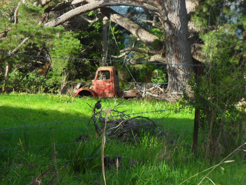 An old red truck abandoned in a field