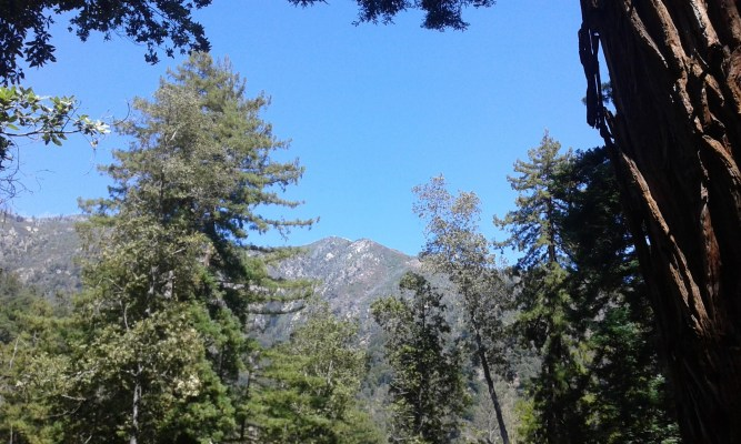 Big Sur Mountain