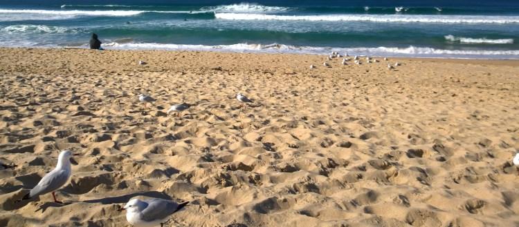 Beach, Sydney, winter