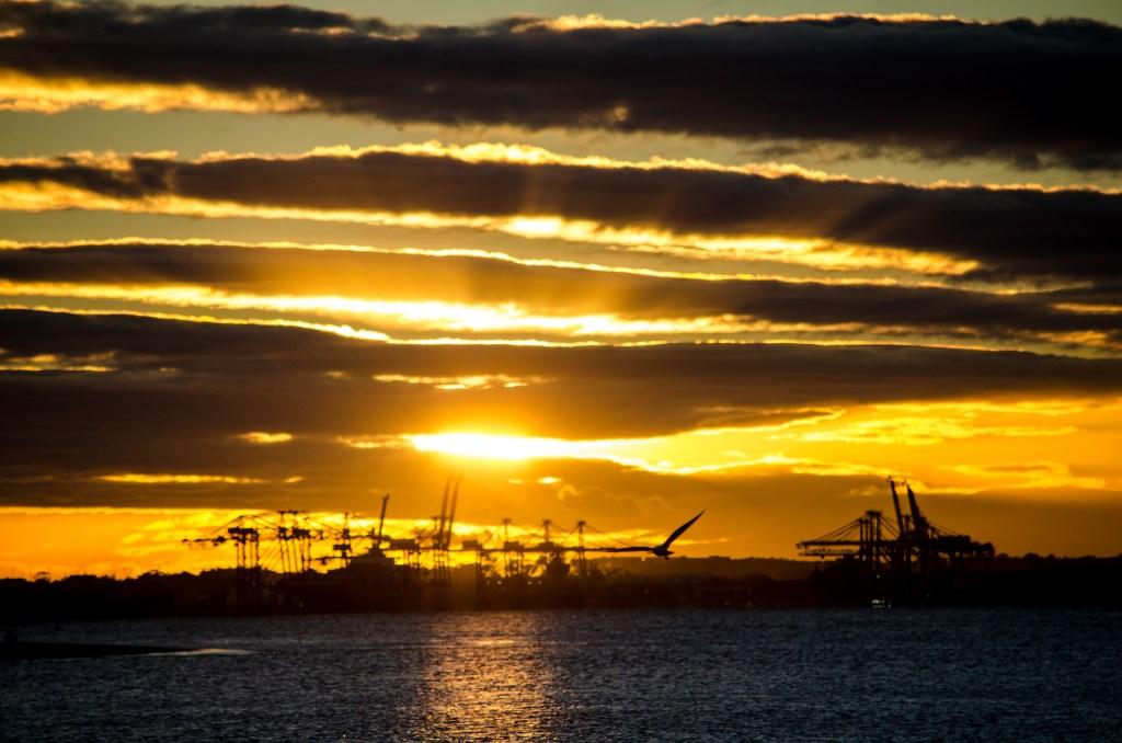Botany Bay Sunrise after the 10 kilometre run