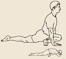 pigeon pose - lower back exercise