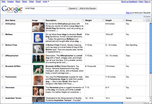 Google Squared search results, via Google Blogoscoped
