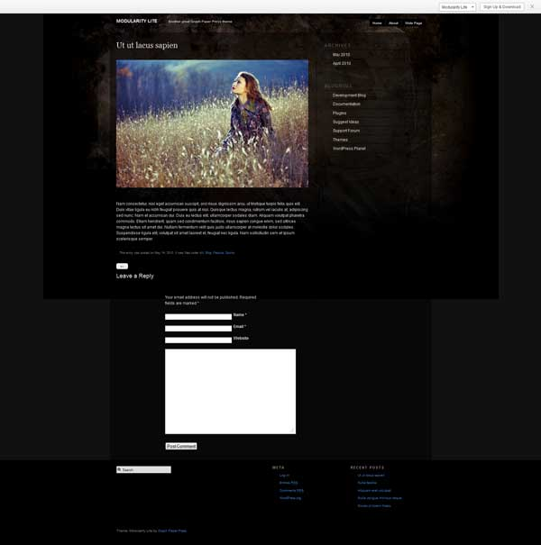 modularity lite wordpress theme