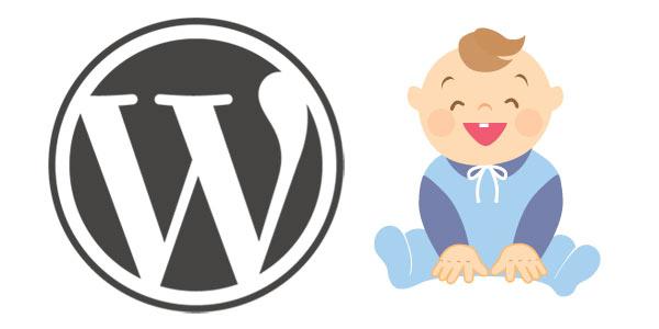 WordPress Child theme : beginners guide