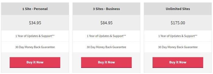 WP Coupons plugin Pricing
