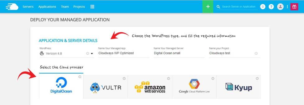 Cloudways WordPress server setup