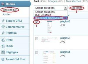 Remove-encaixes-wordpress