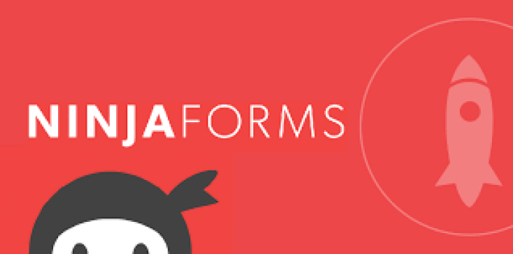 Ninja form blogpacher plugin wordpress formulaires