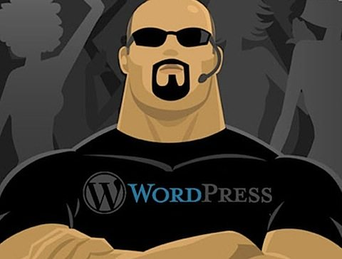 wordpress-é segura