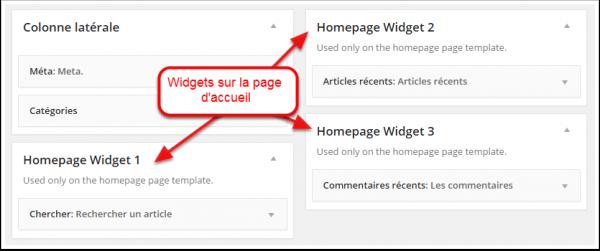 widget-sur-la-page-d-accueil