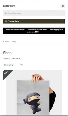 storefront-mobile-presentation