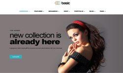 Básico-tema-WordPress-para-crear a un sitio web de comercio electrónico