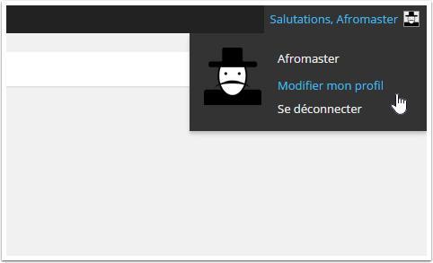 презентация-WP-аватар пользователей