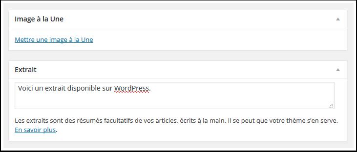 Comment Utiliser Correctement La Balise Lire La Suite Sur Wordpress