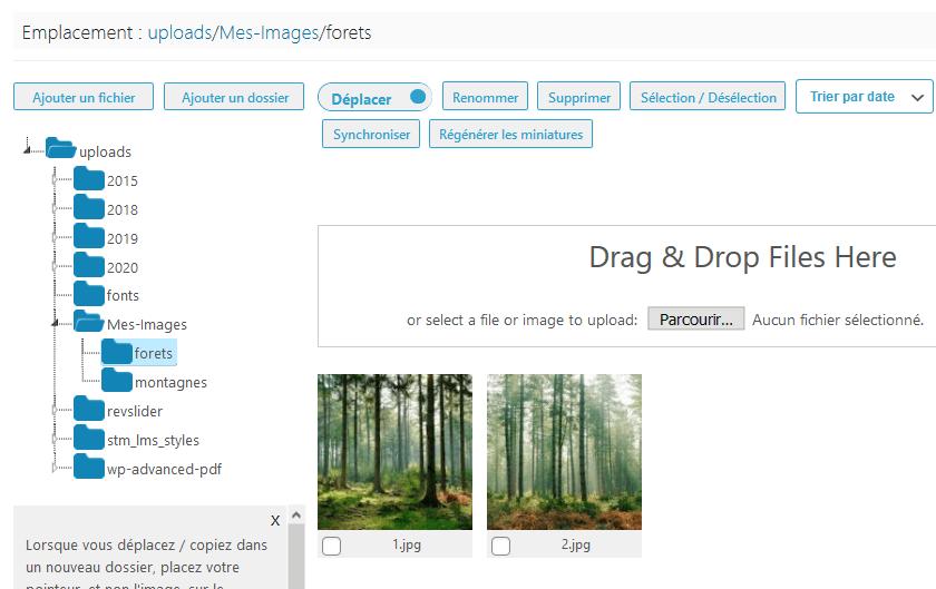 Comment organiser fichiers wordpress dossiers bibliothèque médias blogpascher 6