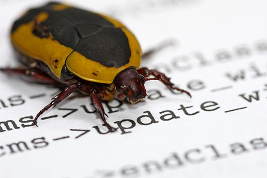 Software-bugs