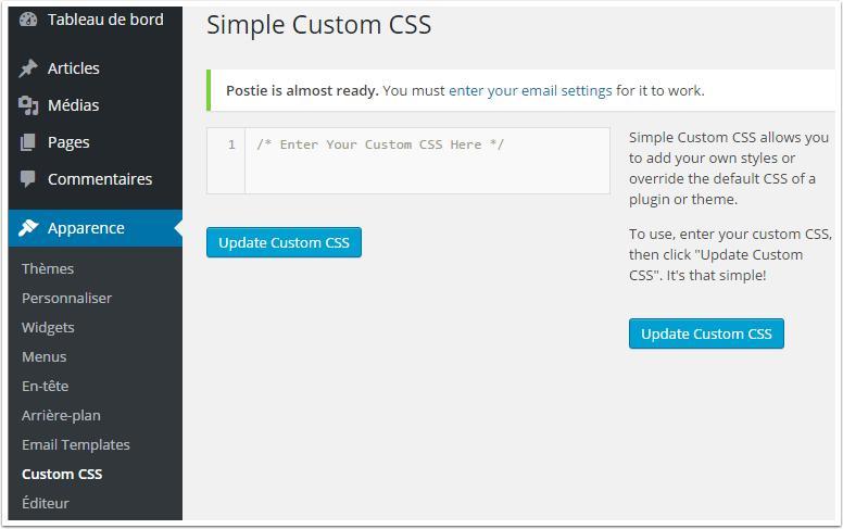 Cómo añadir un CSS personalizado a tu blog de WordPress | BlogPasCher