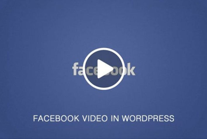 fbvideoinwp