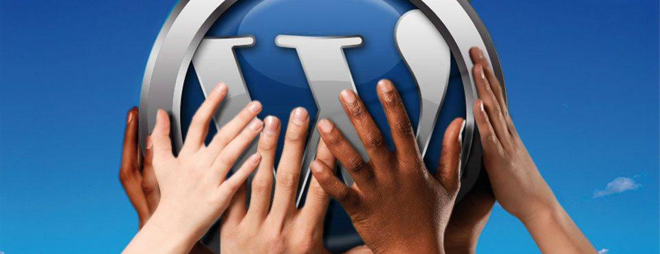 Développement Wordpress Non Développeurs