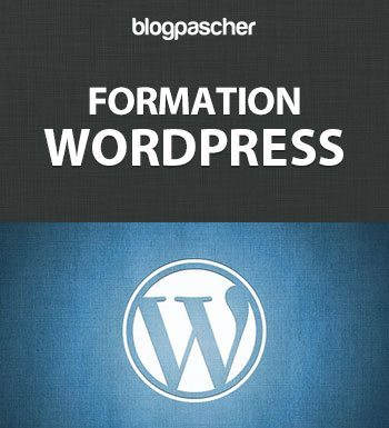 formation-wordpress-pour-blogueur-debutant-cours-wordpress-francais