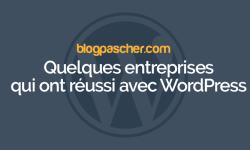 Quelques Entreprises Qui Ont Réussi Sur WordPress En Utilisant Le Model Freemium