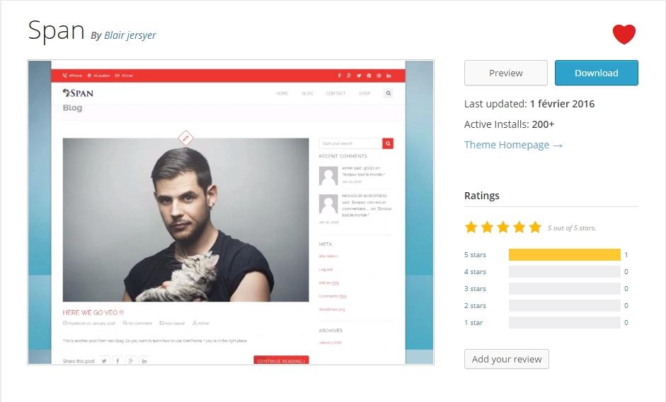 Cómo elegir el mejor tema de WordPress   BlogPasCher