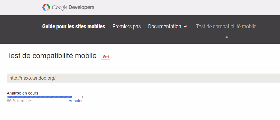 wordpress-test-de-mobilite-google