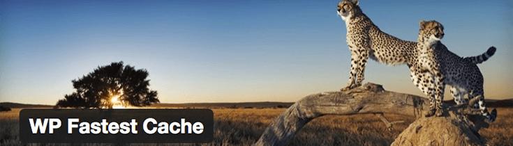 плагин WP-Fastest-Cache Cache для WordPress