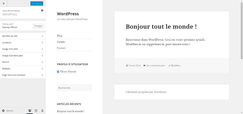 5 formas de modificar el diseño de un tema de WordPress | BlogPasCher