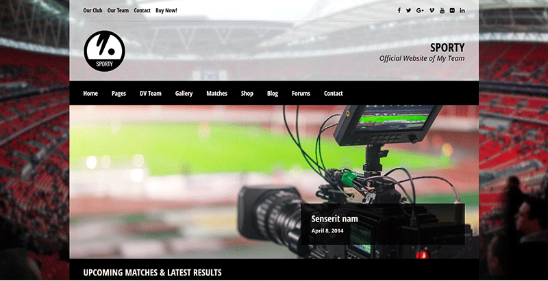 10 temas de WordPress para club deportivo | BlogPasCher