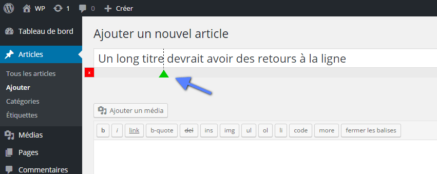 WordPress long titre blog