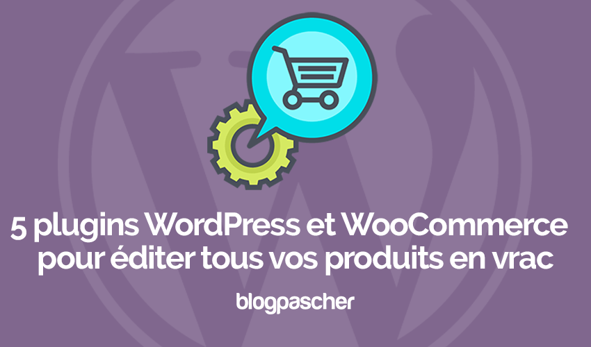 Plugins Wordpress Editer Produits Vrac