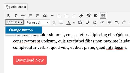 style-personnalise-editeur-wordpress