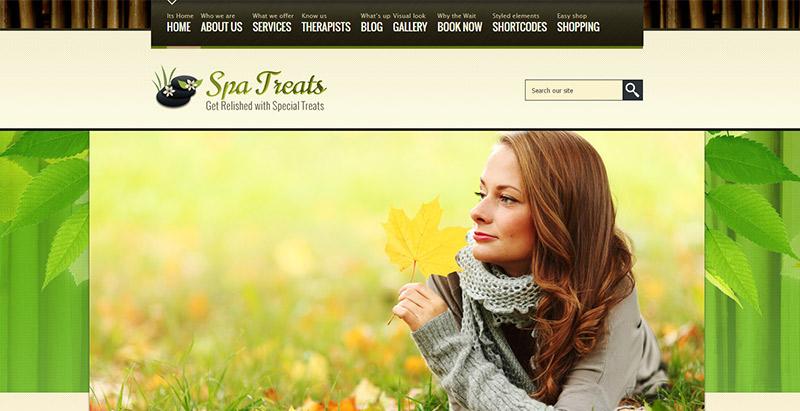 spa-treats-theme-wordpress-en-francais