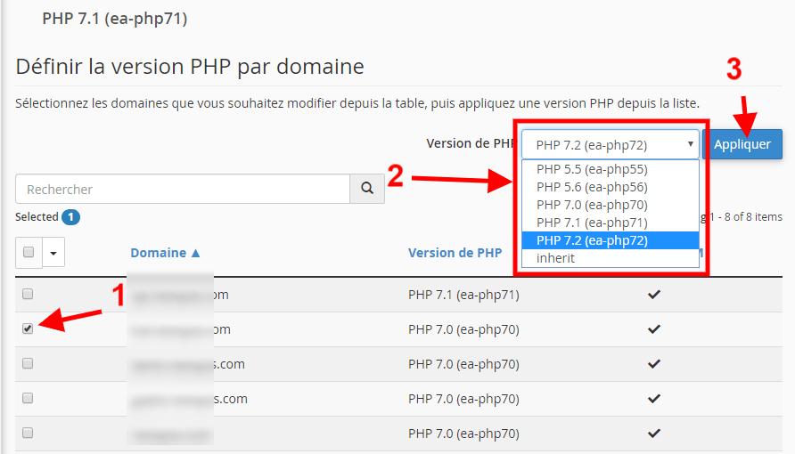 Choisir la version php sur un domaine
