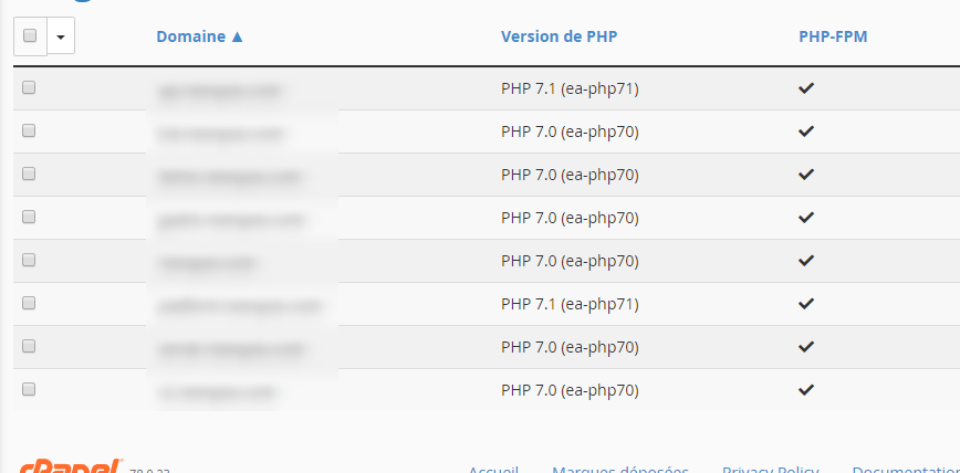 Domain cpanel version php