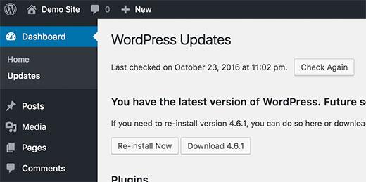 -se-a-dia da wordpress