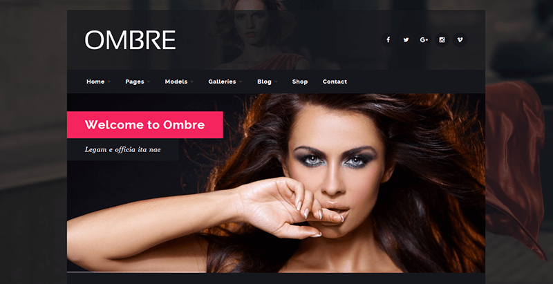 Ombre themes wordpress creer site internet top models