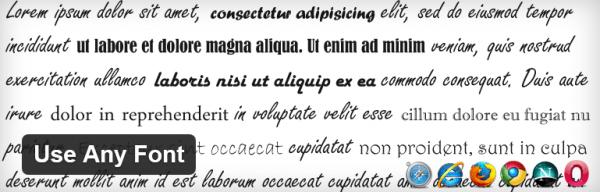 utilizar-qualquer-são-wordpress-plugin