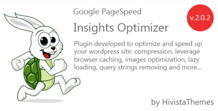 Google pagespeed insights optimizer plugin wordpresss