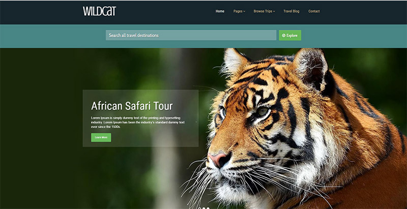 wildcat-themes-wordpress-creer-site-web-tour-operateur-agence-voyages