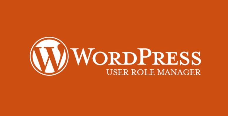 Kullanıcı rol yöneticisi-plugin-wordpress-to-kullanıcı rolleri