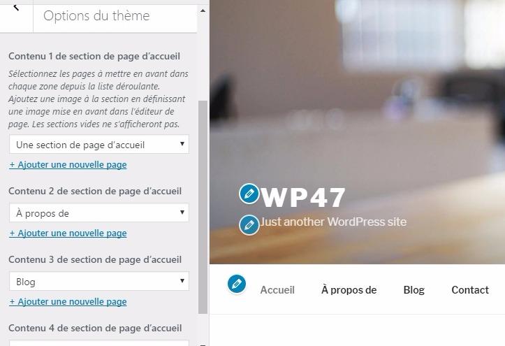 Cómo personalizar el tema Twenty Diecisiete | BlogPasCher