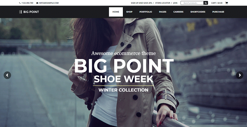 Big point theme wordpress e commerce