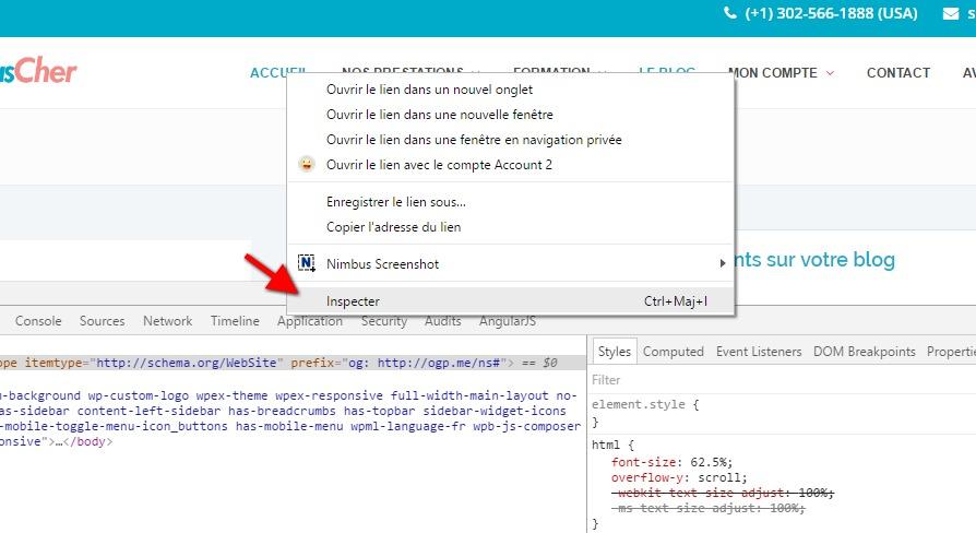 Inspecter le contenu wordpress code