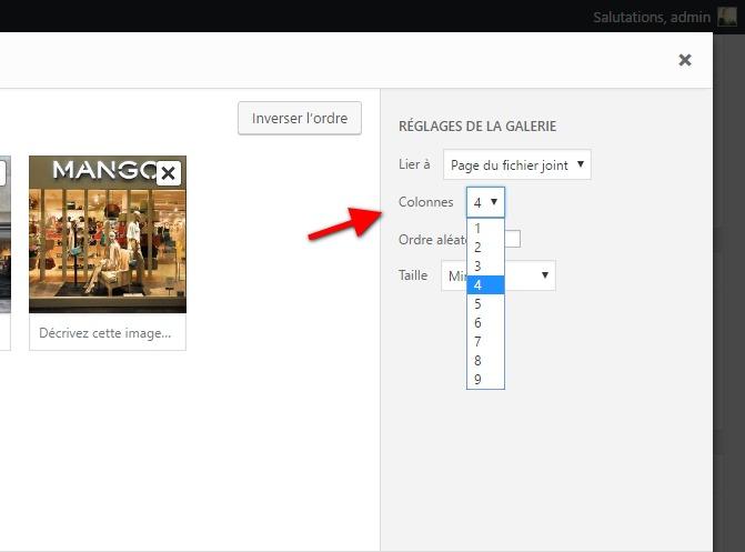 Cómo mostrar imágenes en una cuadrícula WordPress   BlogPasCher