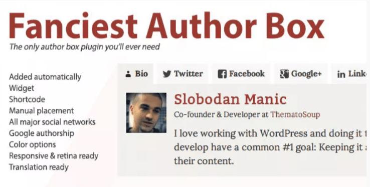 ajouter une section auteur - Fanciest author box
