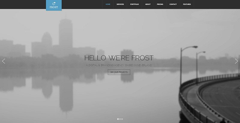 Frost themes wordpress creer site web photographies studio photos