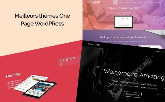 temas 10 OnePage WordPress para tu blog   BlogPasCher